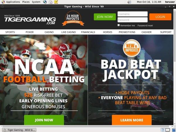 Tigergaming Top Bets