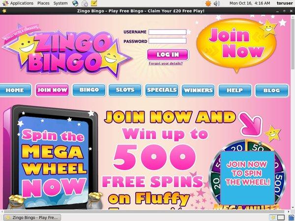 Zingo Bingo Opening Offer